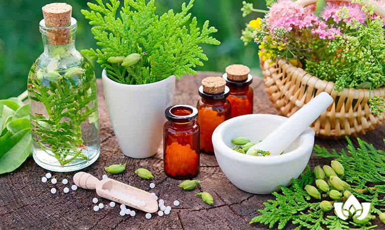 natural allergy herbal solutions | Mindful Healing | Mississauga Naturopathic Doctor