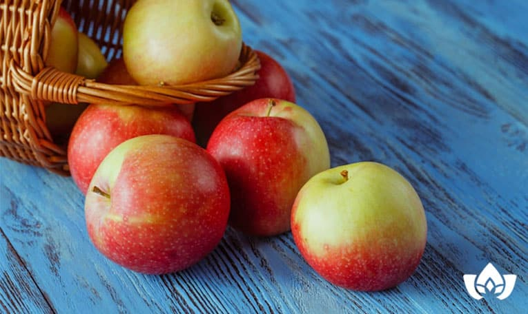 Types of apples that are the healthiest for you | Mindful Healing | Mississauga Naturopathic Doctor