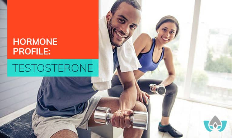 Hormone Profile: Testosterone | Mindful Healing | Mississauga Naturopathic Doctor