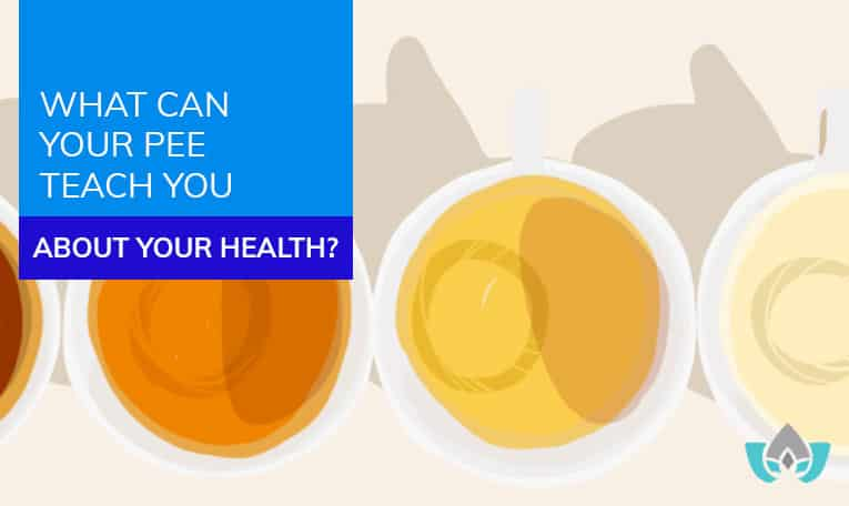 What Can Your Pee Teach You About Your Health? | Mindful Healing | Naturopathic Doctor Mississauga