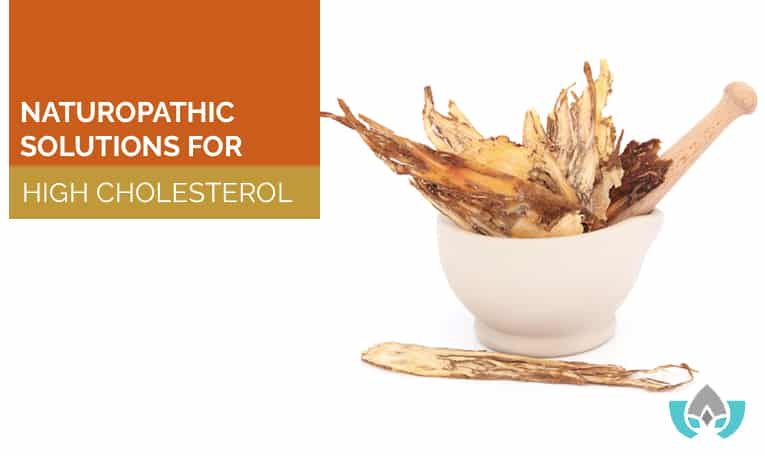 Naturopathic Solutions For High Cholesterol   Mindful Healing   Naturopathic Doctor Mississauga